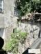 Denkmalgeschützes Bürgerhaus aus dem 14. Jahrhundert in Bestlage am Giselakai mit Ausbaugenehmigung - Bild